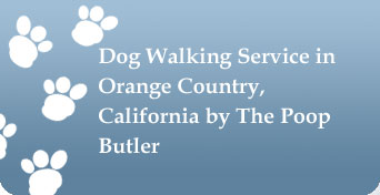 Dog Walking Service in Orange County, California by The Poop Butler