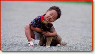 Emergency Pet Care Vet Hospitals & Animal Veterinarians In Orange County, CA + Southern California