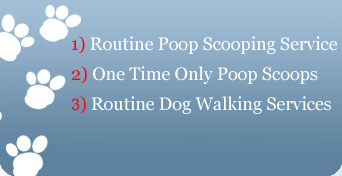 Got Dog Poop? Scheduled Pooper Scooper Service For Your Dogs & Cats In Orange County, California Including Dog Walking
