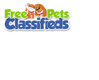 Pet Classifieds And Pets For Sale Classified Ads Sites - Page 1